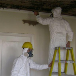 Does Bleach Actually Kill Mold in Your Michigan Home?
