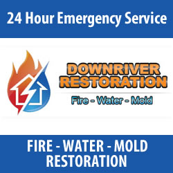 Click Here for Downriver Restoration
