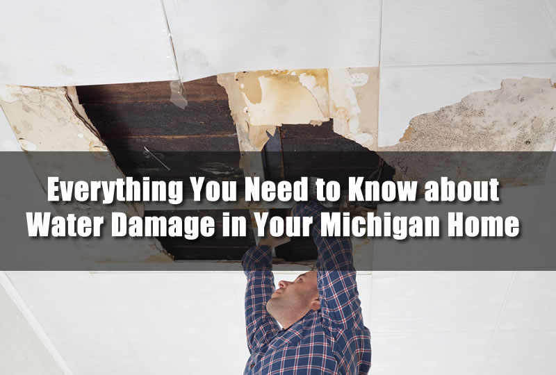 Everything You Need to Know about Water Damage in Your Michigan Home