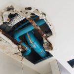 5 Common Signs of Water Damage in Ann Arbor Michigan