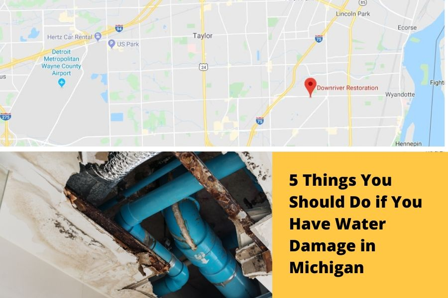 5 Things You Should Do if You Have Water Damage in Michigan